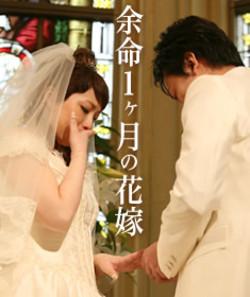 I_n_image_20071130_123303